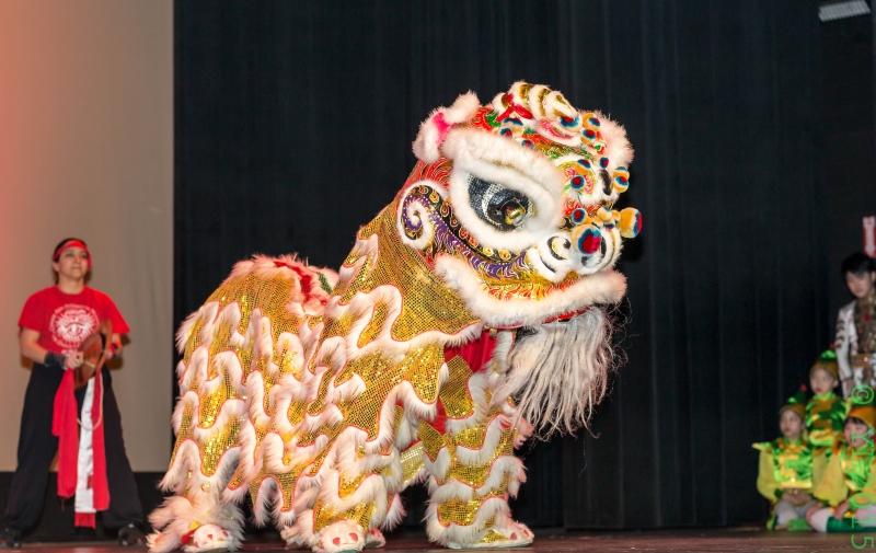 Nashville Chinese New Year 2015-11