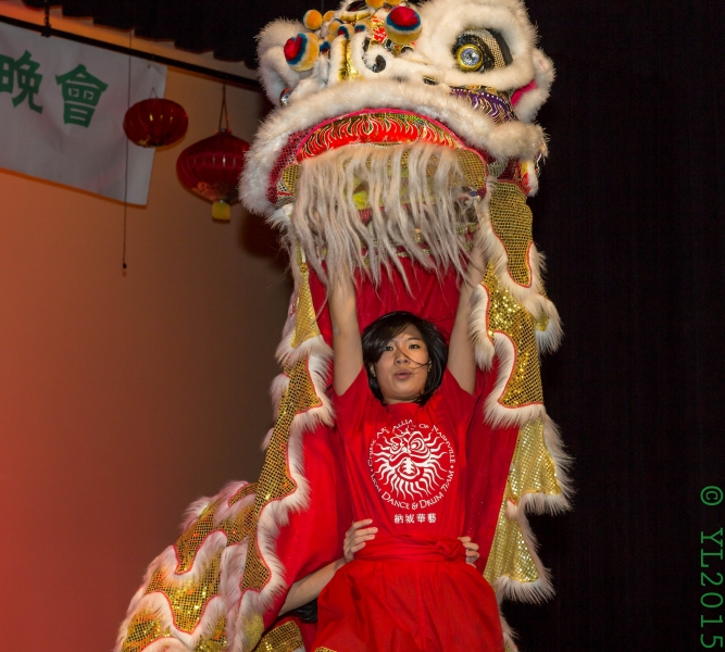 Nashville Chinese New Year 2015-13