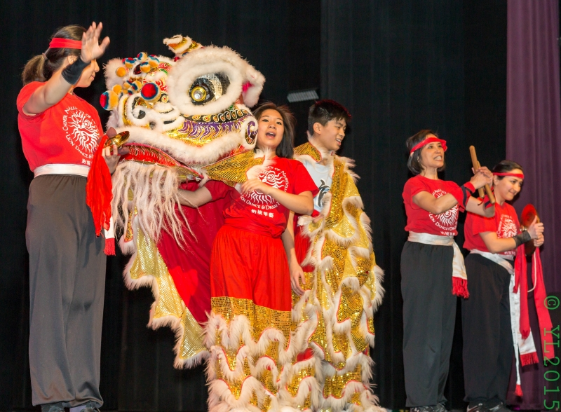 Nashville Chinese New Year 2015-14