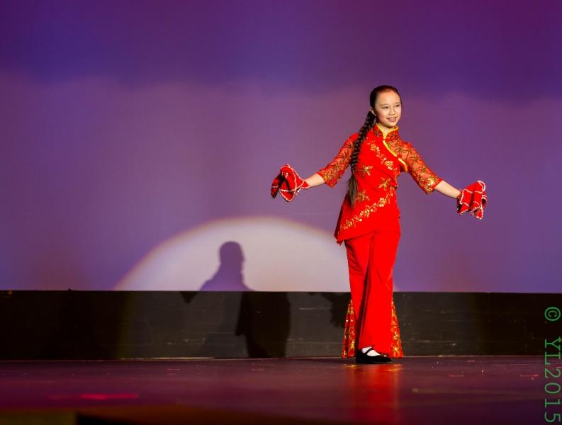 Nashville Chinese New Year 2015-48