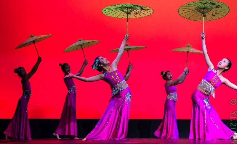Nashville Chinese New Year 2015-76