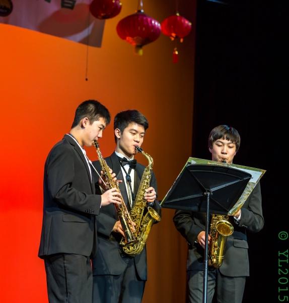 Nashville Chinese New Year 2015-81